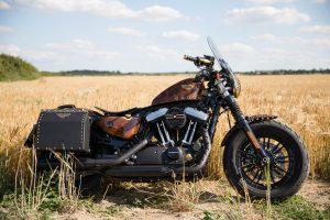 Exquisite Custom Steampunk Harley-Davidson Sportster